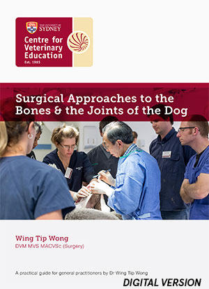 Surgical Approaches to the Bones & the Joints of the Dog (MP4)