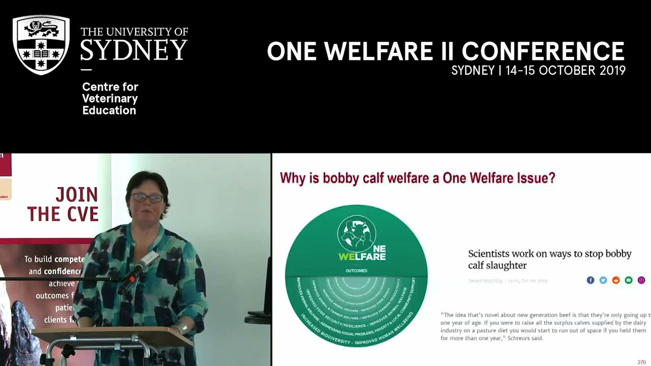 Bobby calf welfare: A case study in One Welfare Research