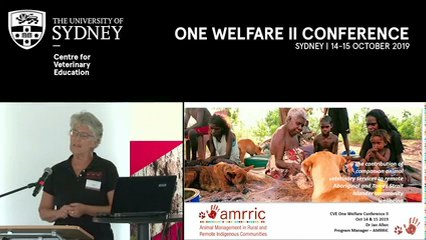 The contribution of companion animal veterinary services to remote Aboriginal and Torres Strait Islander community wellbeing