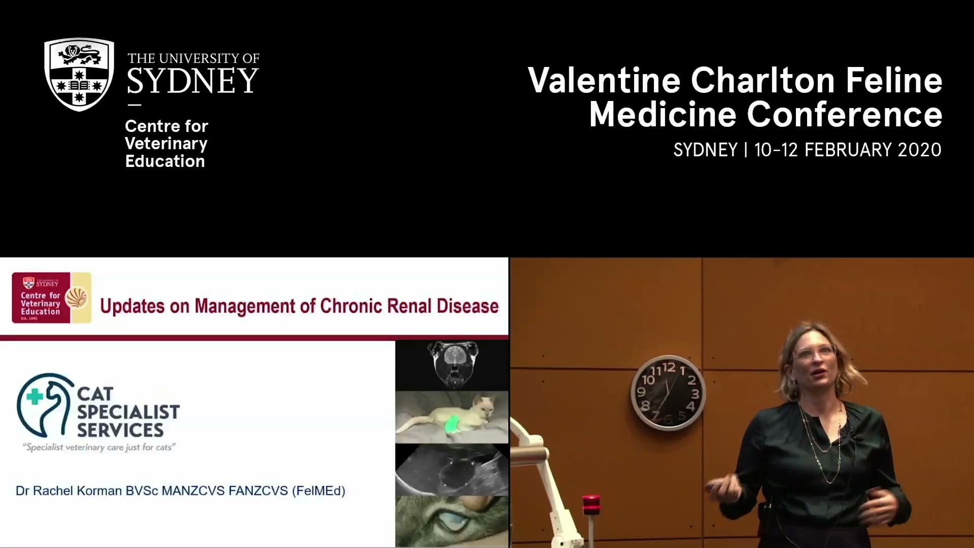 Updates on management of chronic renal disease (incl. IRIS staging)