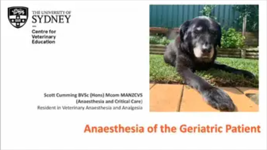 Anaesthesia in the Geriatric Patient