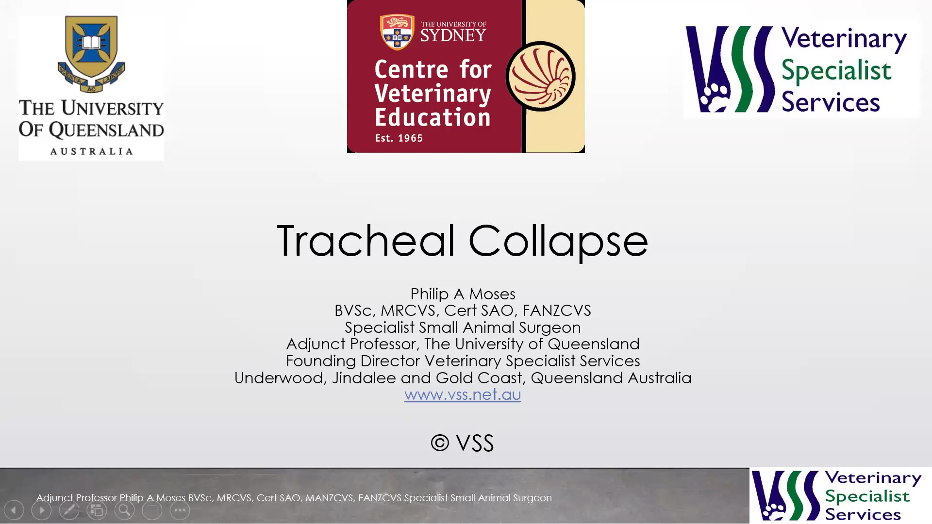 Tracheal Collapse WebinarLIVE!