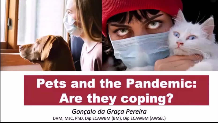 Pets & The Pandemic: Are They Coping? WebinarLIVE!